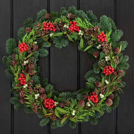 door sign: Christmas and winter wreath with holly, mistletoe, pine cones and blue spruce fir over dark blue oak  front door background.