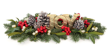 christmas ivy: Christmas gold joy sign with holly, mistletoe, ivy, pine cones and winter greenery over white background.