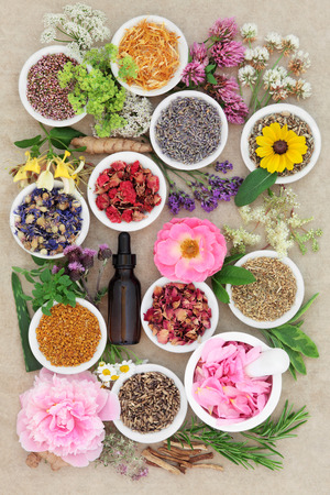 medical herbs: Herbal medicine flower and herb selection with dropper bottle and mortar with pestle forming an abstract background over handmade hemp paper background.