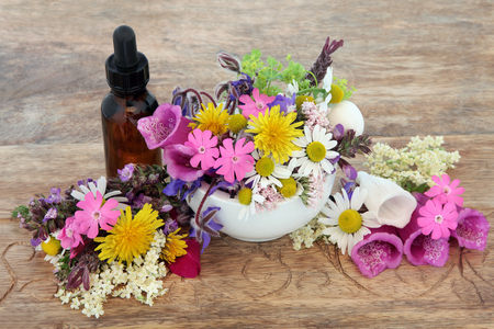 medicina natural: Flor de la medicina a base de hierbas y la selección de hierbas en un mortero con su correspondiente mano y botella cuentagotas sobre fondo de madera.