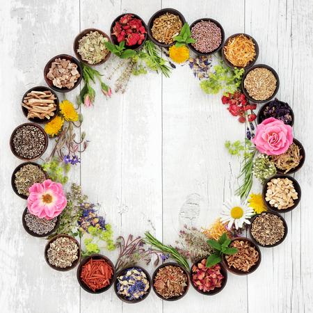 medicina: Flor natural y selecci�n hierba usada en la medicina herbaria en tazones y suelto formando un c�rculo sobre fondo de madera apenado.