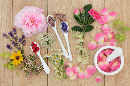 herb medicine: Herb and flower selection used in herbal medicine loose, in porcelain spoons and mortar with pestle over oak background. Stock Photo
