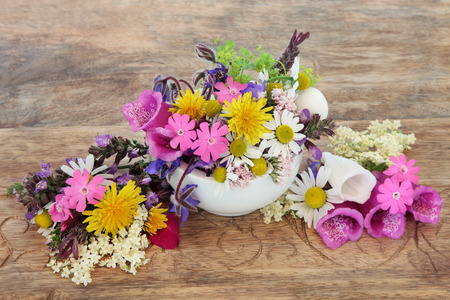 mortar and pestle medicine: Health care using herbal medicine flower and herb selection in a mortar with pestle over distressed wooden background.