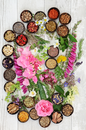 herb medicine: Alternative herbal medicine flower and herb selection over distressed wooden background.