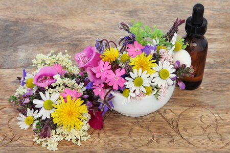 natural selection: Natural herbal medicine with flower and herb selection in a mortar and  pestle with dropper bottle over distressed wooden background. Stock Photo
