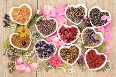 with pollen: Healing herb and flower selection used in herbal medicine in heart shaped bowls with pollen and honey bee over oak background.