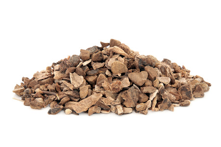 tcm: Wild yam root herb used in natural alternative herbal medicine over white background. Dioscoria villosa. Shan yao.
