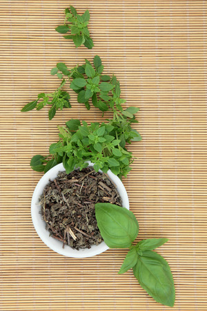 tulsi: Fresh basil herb varieties with dried tulsi basil herbal medicine in a porcelain bowl over bamboo background.