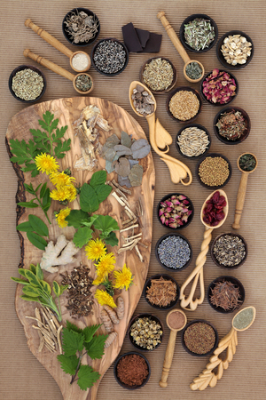 natural selection: Superfood with herb and spice selection used in natural herbal medicine for women.