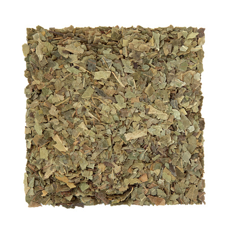 dried: Neem herb used in ayurvedic alternative herbal medicine over white background. Azardirachta. Stock Photo