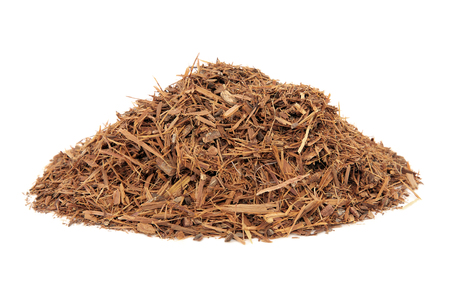 Catuaba bark herb used in natural alternative herbal medicine over white background. Used as an aphrodisiac to increase libido.