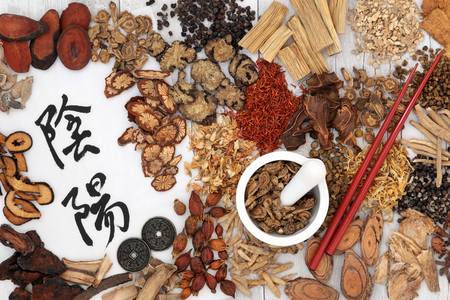 Yin and yang symbols with traditional chinese herbal medicine selection, i ching coins, mortar with pestle and chopsticks.