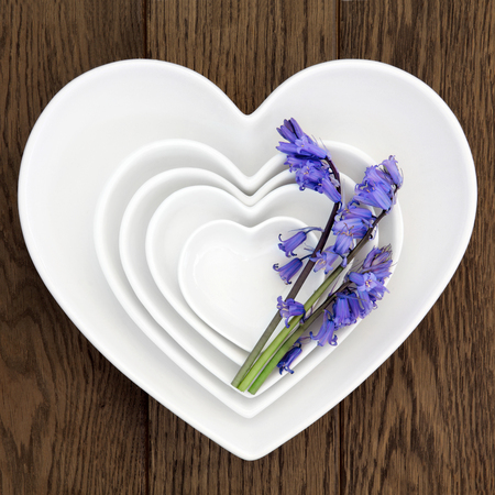background settings: Heart shaped porcelain dishes with bluebell flowers over old oak background.