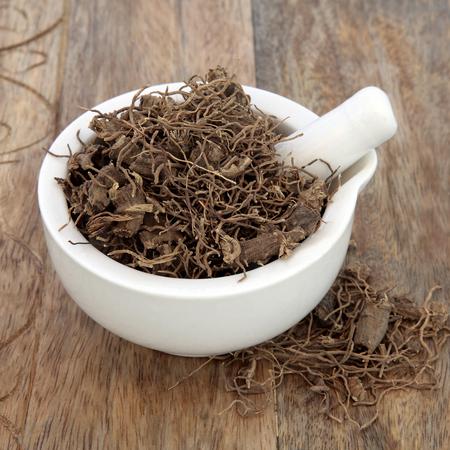 오래 된 나무 배경 위에 자연 대체 약초 의학에서 사용하는 검은 cohosh 루트 허브. 여성의 폐경기 및 생리 전 증후군 치료에 사용됩니다. Actaea racemosa.