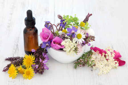 Naturopathic flower and herb selection in a mortar with pestle and medicinal dropper bottle over white background.