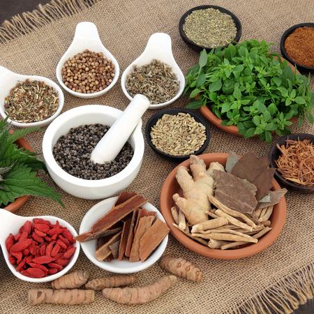 jengibre: La curación de hierbas y especias de selección utilizado en la medicina natural alternativa natural para los hombres mayores de fondo de arpillera. enfoque selectivo. Foto de archivo