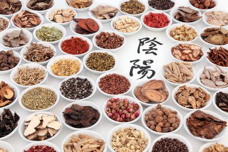 흰색 도자기 그릇에 전통적인 중국 약초의 선택과 음과 양 기호입니다. 번역은 음과 양으로 읽습니다.