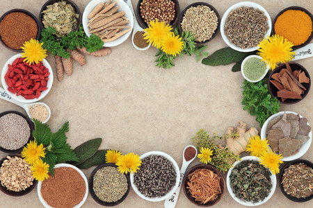 Herbal medicine selection with fresh and dried herbs spices forming an abstract background on natural hemp paper.