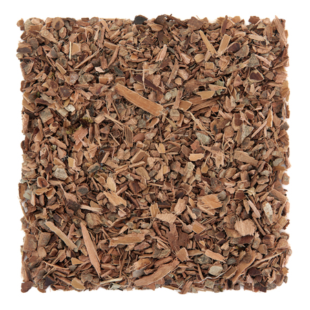 Witch hazel bark herb used in alternative herbal medicine over white background. Natural remedy for psoriasis and eczema.