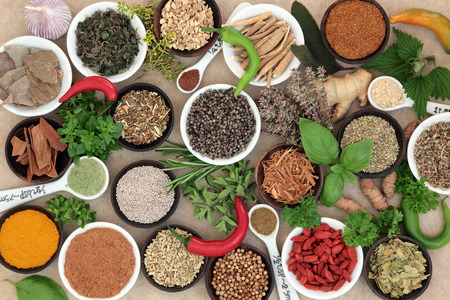 natural selection: Herb and spice selection used in cooking and in natural alternative herbal medicine on hemp paper background.