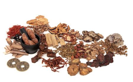 Chinese kruid ingrediënten gebruikt in de traditionele kruidengeneeskunde met een mortier en stamper en oude feng shui munten op een witte achtergrond. Stockfoto