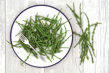 Rock samphire vegetable health food on a plate with silver fork and loose over white ditressed wooden background. Salicornia europaea.