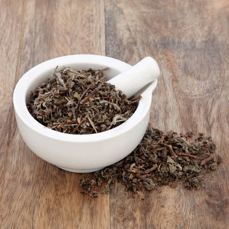 tulsi: Tulsi holy basil herb used in natural alternative herbal medicine in a mortar with pestle over old wooden background. Stock Photo