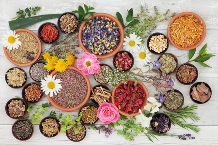 herb medicine: Large medicinal herb and flower selection used in natural alternative medicine over distressed wooden background.