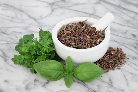 tipos de albahaca fresca hierba seca con tulsi albahaca santa en un mortero con su correspondiente mano sobre fondo de mármol. Foto de archivo