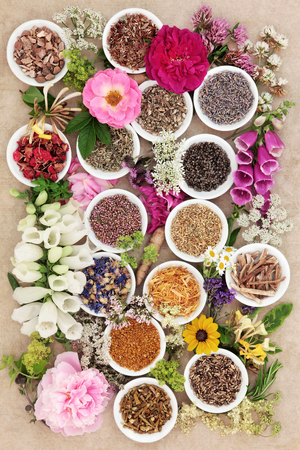 herb medicine: Herb and flower selection used in natural herbal medicine over hemp paper background.