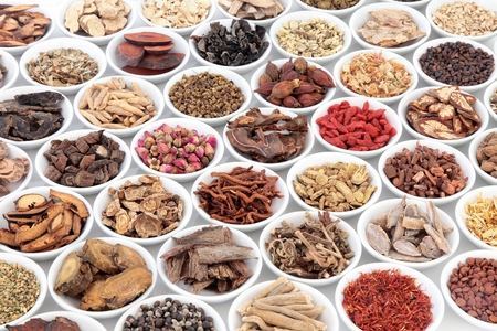 Chinese herb selection used in traditional alternative herbal medicine in porcelain bowls over white background.