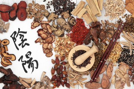 rice paper: Chinese herbal medicine ingredients used in traditional herbal medicine with yin and yang mandarin calligraphy symbols on rice paper. Stock Photo