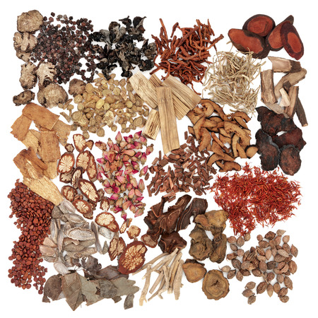 herb medicine: Chinese herb ingredients used in traditional herbal medicine over white background.