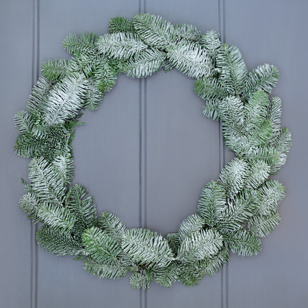 christmastide: Christmas blue spruce fir wreath with snow on grey front door background. Stock Photo