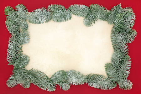 spruce: Christmas abstract background border with snow covered blue spruce fir on old parchment paper over red.