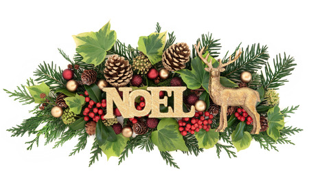 Christmas floral decoration with noel glitter sign, red and gold bauble and reindeer decorations, holly, ivy, pine cones, cedar cypress and fir leaf sprigs over white background.