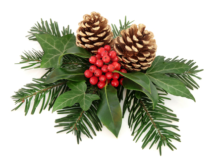 christmas gold: Winter and christmas floral arrangement of holly with red berries, ivy, gold pine cones and  fir over white background.