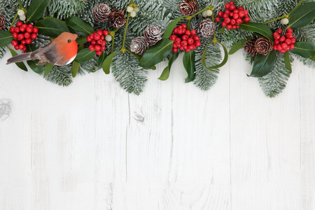 christmas robin: Traditional winter and christmas background border with robin decoration, flora of holly, mistletoe, snow covered  fir and pine cones over white distressed white wood Stock Photo