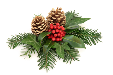 Winter with holly and red berry decoration with, ivy, gold pine cones and fir over white background. Stock Photo