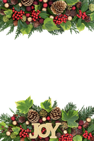 gold christmas decorations: Christmas decorative border with joy glitter sign, red and gold bauble decorations, holly, ivy, pine cones and fir leaf sprigs over white background. Stock Photo