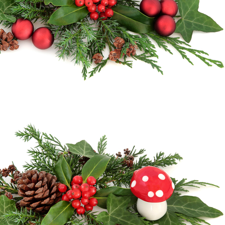'fly agaric': Winter festive border with decoration of fly agaric mushroom, holly, pine cones, ivy, cedar cypress and fir over white background.
