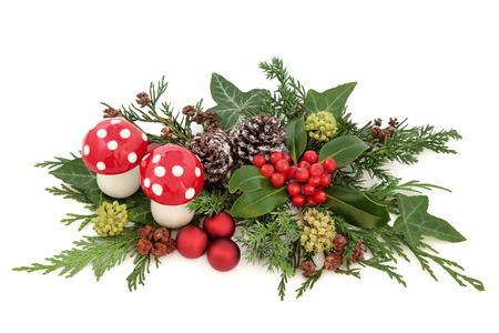 white fly: Christmas decorative display with red baubles and fly agaric mushroom decorations, holly, ivy, snow covered pine cones and winter greenery over white background.