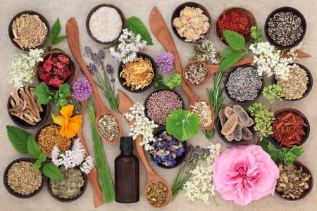 Selección de flores y hierba usada en la medicina herbaria alternativa natural en cucharas de madera y cuencos con botella de aceite esencial en el fondo de papel de cáñamo. Foto de archivo