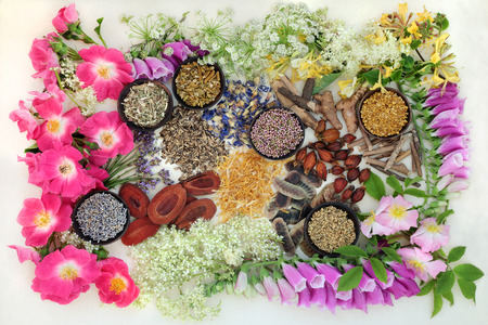 natural selection: Natural alternative medicine selection of herbs and flowers in wooden bowls on hemp paper background. background.