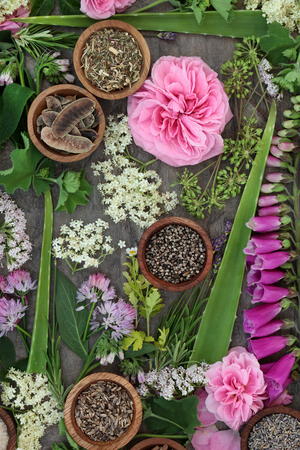 Fresh and dried herbs and flowers used in natural alternative herbal  remedies.