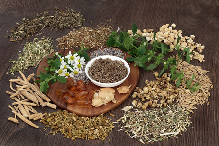 herb medicine: Herb selection used in natural herbal  medicine to heal for sleeping and anxiety disorders on oak background. Stock Photo