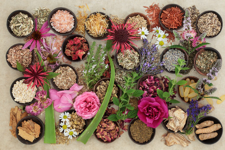 Natural alternative medicine for skin disorders with fresh and dried herbs and flowers on hemp paper background.