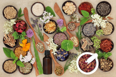Natural healing herb and flower collection used in alternative herbal medicine over hemp paper background.