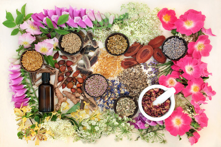 Natural herb and flower collection used in alternative herbal medicine remedies with essential oil bottle and mortar with pestle on hemp paper background.
