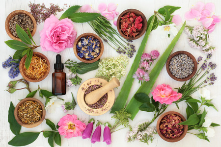 Healing flower and herb selection used in natural alternative medicine on distressed white wood background. Stock Photo
